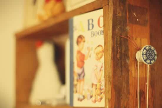 Elizabeth the Penguin on her Shelf