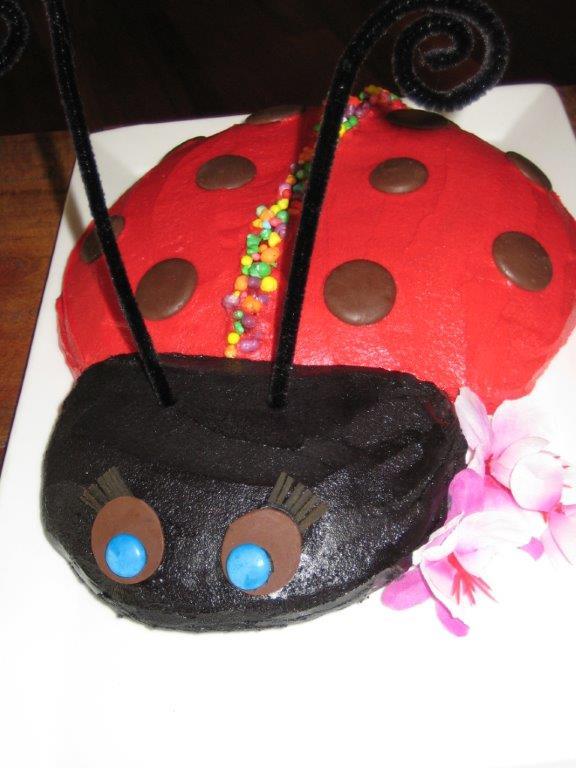 ladybug cake 2 - Copy