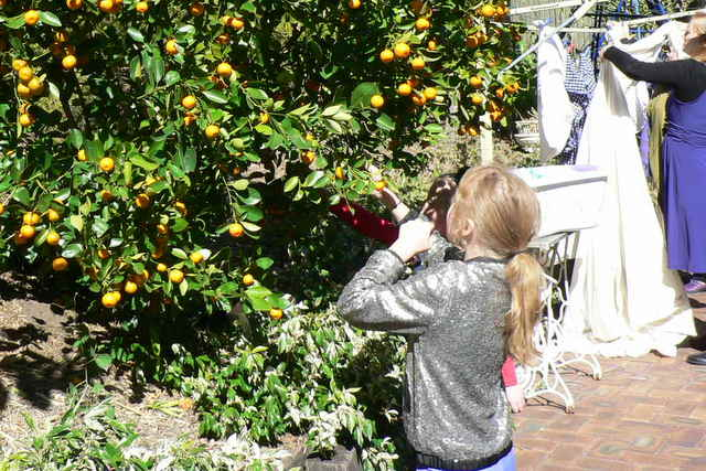 Jas Picking Fruit
