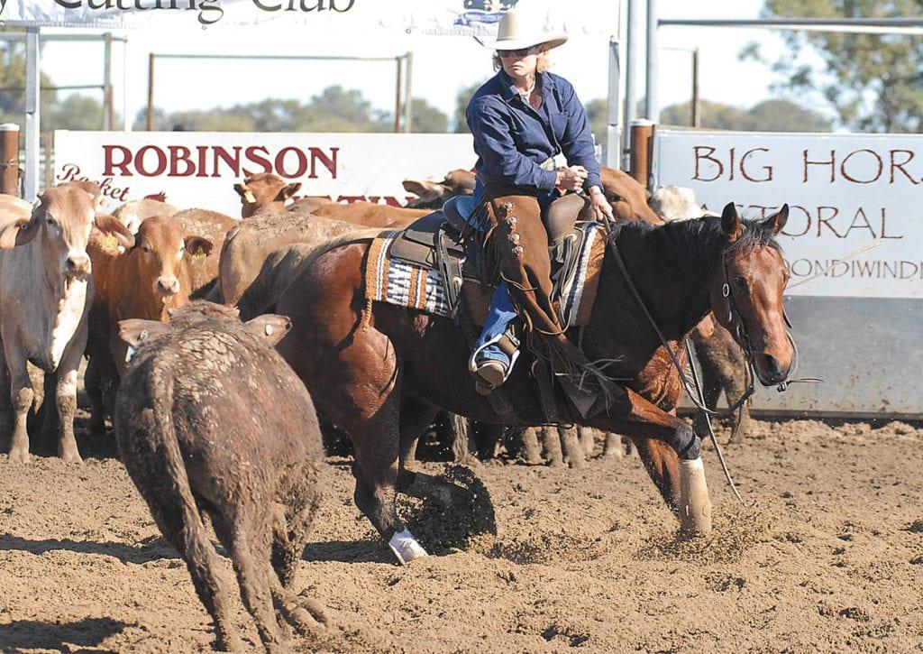 Sue Williams*Williams Saddles