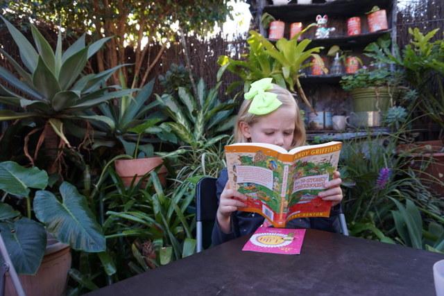 Avid Reader 3