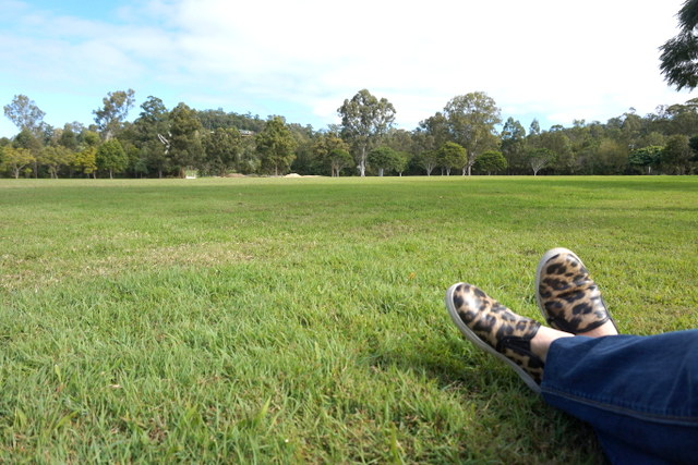 Wittongpark4