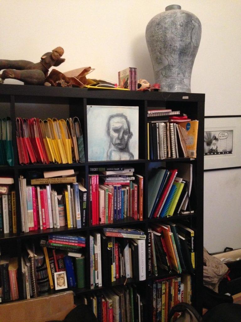 Fiona Bookshelf pic2