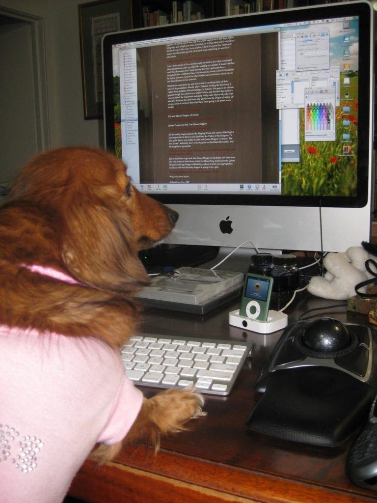 Natalie's Desk and Dachshund
