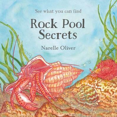 xrock-pool-secrets.jpg.pagespeed.ic.6IiJg0RIdQ