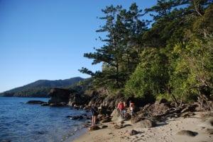 Whitsundays Exploring Belinda Murrell 'Pippa's Island'