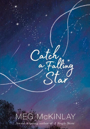 xcatch-a-falling-star.jpg.pagespeed.ic.TWY2IJQf4E